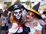 HALLOWEEN PARTY (lunedì 31 ottobre 2016) ore 19.30 CENA MANGIA BALLA E CANTA POCHI PASSI DA MILANO (Rozzano – Dolcetto Scherzetto!!) Posted on 14 ottobre 2016 Nell'atmosfera del lucubre per chi vuole anche in maschera - da noi si organizza Halloween Party!! MANGIA E BEVI SENZA LIMITI,GIROCARNE,GIROPIZZA,MENU' PESCE,MENU' CARNE,GNOCCO FRITTO – (MILANO FIERA -ROZZANO) Dalle ore 19.30 benvenuti adulti e piccini Live music Karaoke e tanto divertimento mangia e balla!!.Solo su prenotazione!! fino ad esaurimento posti!! Posted on 14 ottobre 2016 MANGIA E BEVI SENZA LIMITI! IL GIOVEDI E LA DOMENICA GIROPIZZA +bibita e caffè 10€!! GRIGLIATA DI CARNE con 1 Bibita!! 10€ GIROCARNE E BERE ILLIMITATO!! 20€ con 3 portate di carne IL VENERDI E SABATO GIROCARNE E BERE ILLIMITATO!! 25€ con 3 portate di carne Menù carne e bere illimitato!! antipasto,1 primo,1 secondo con contorno, dessert , caffe, amaro. 22€ Menù pesce e bere illimitato!! antipasto,1 primo,1 secondo con contorno, dessert , caffe, amaro. 26€ ————————————– Giropizza illimitato il giovedì e domenica con bibita e caffè 10€ Giropizza illimitato il venerdi sabato con bibita e caffè 15€ ——————————————————————— —————————————————————————————————- Imperial disco Restaurant Pizzeria griglieria MILAN Quinto dé Stampi Rozzano – via Monte Amiata ,20 (MI) infoline 02 5750 0759 ————————————————————————————————————-